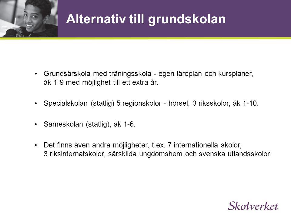 Alternativ till grundskolan