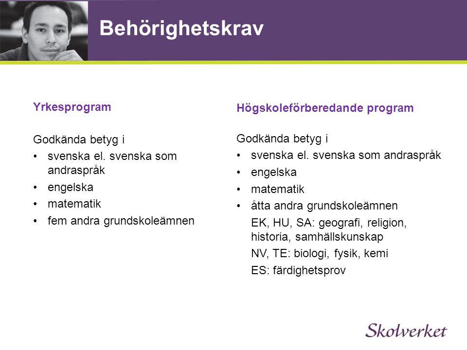 Behörighetskrav Yrkesprogram Högskoleförberedande program