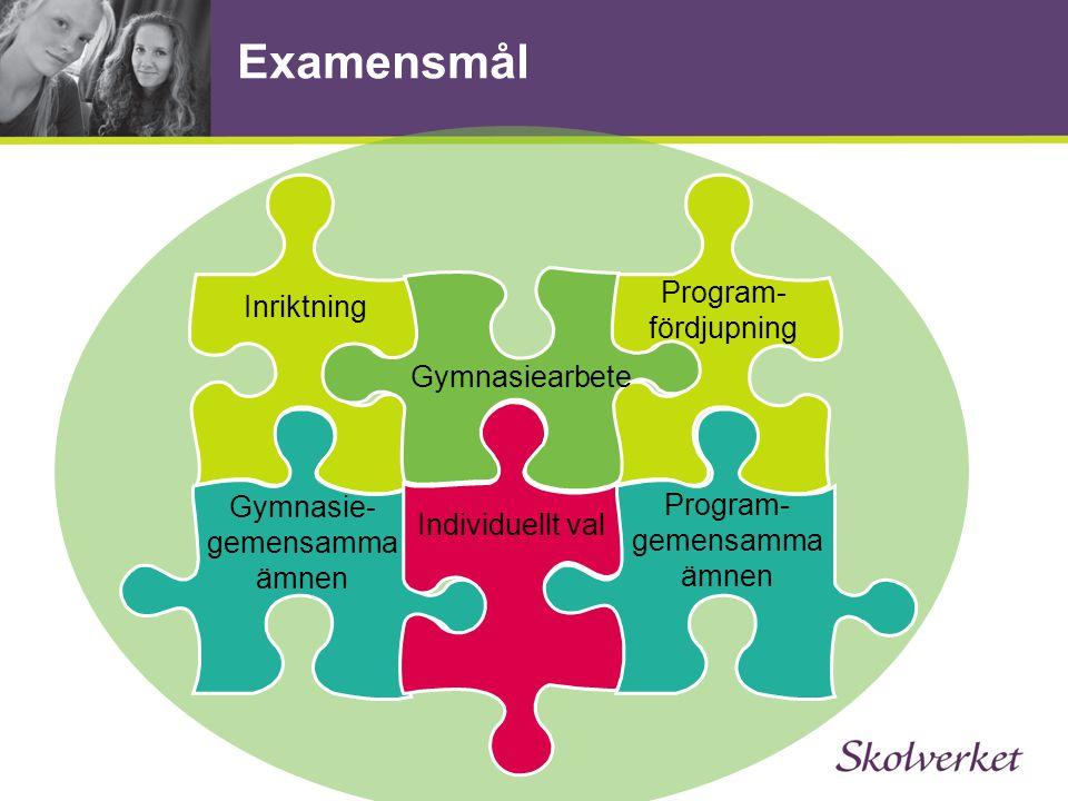 Examensmål Program-fördjupning Inriktning Gymnasiearbete