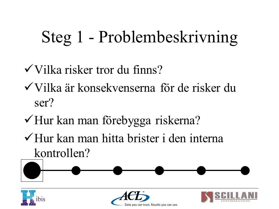 Steg 1 - Problembeskrivning