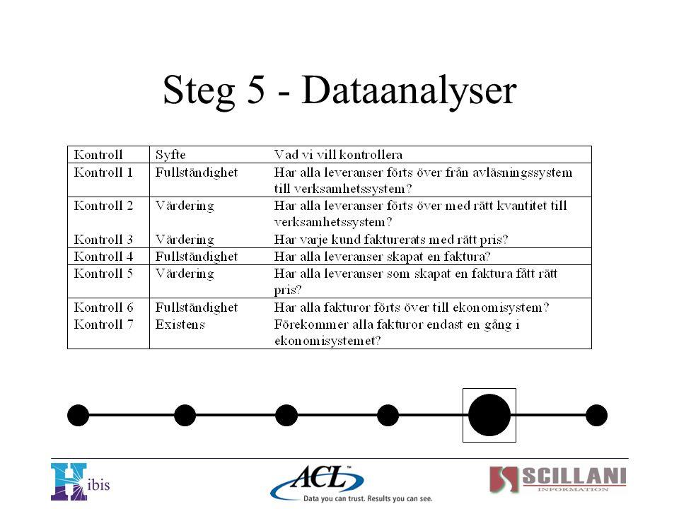 Steg 5 - Dataanalyser