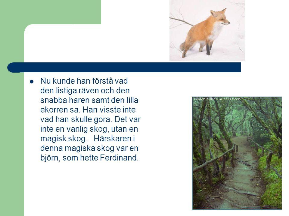 Nu kunde han förstå vad den listiga räven och den snabba haren samt den lilla ekorren sa.