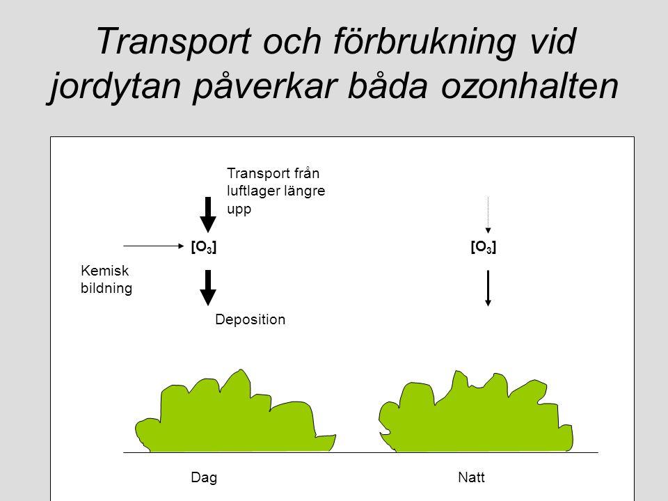 Transport och förbrukning vid jordytan påverkar båda ozonhalten