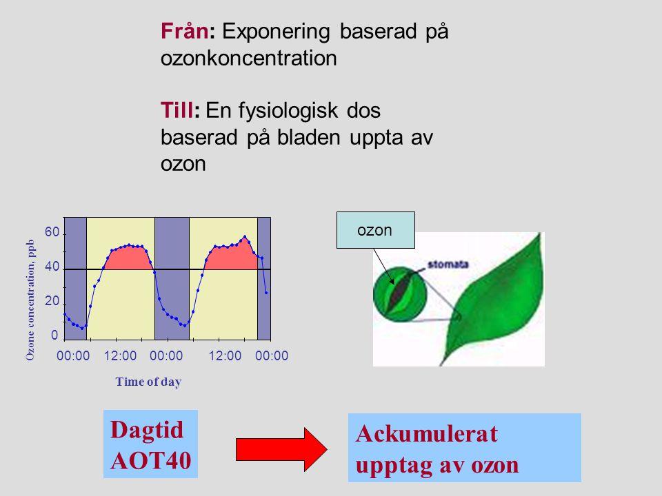 Ackumulerat upptag av ozon