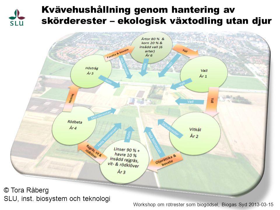- Välplanerad lång växtföljd (många olika växtfamiljer)