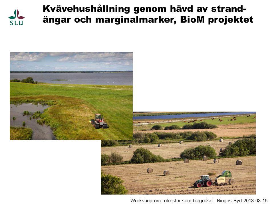 Kvävehushållning genom hävd av strand-ängar och marginalmarker, BioM projektet
