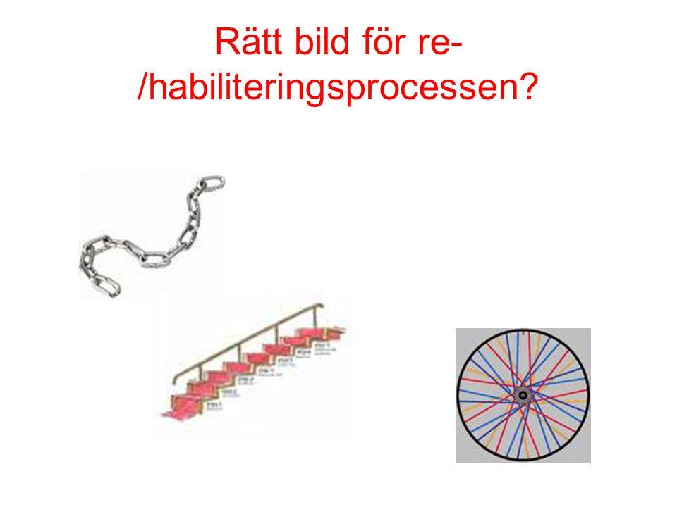 Rätt bild för re-/habiliteringsprocessen
