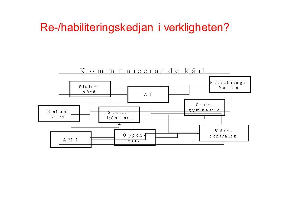 Re-/habiliteringskedjan i verkligheten