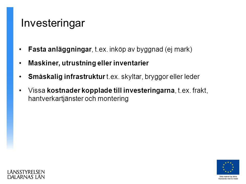 Investeringar Fasta anläggningar, t.ex. inköp av byggnad (ej mark)