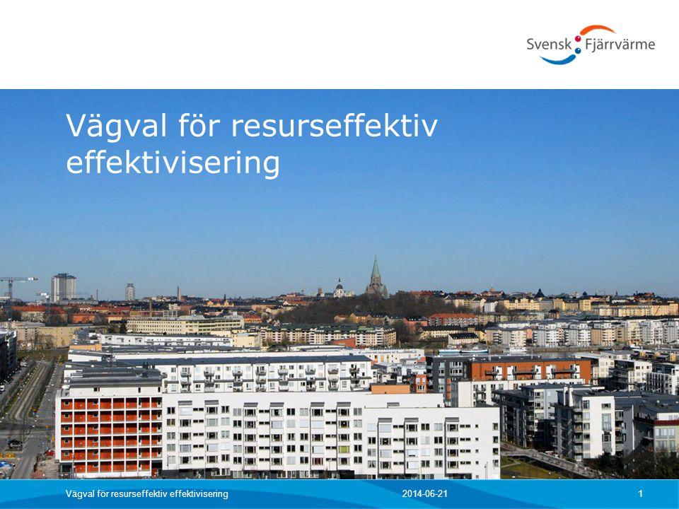 Vägval för resurseffektiv effektivisering