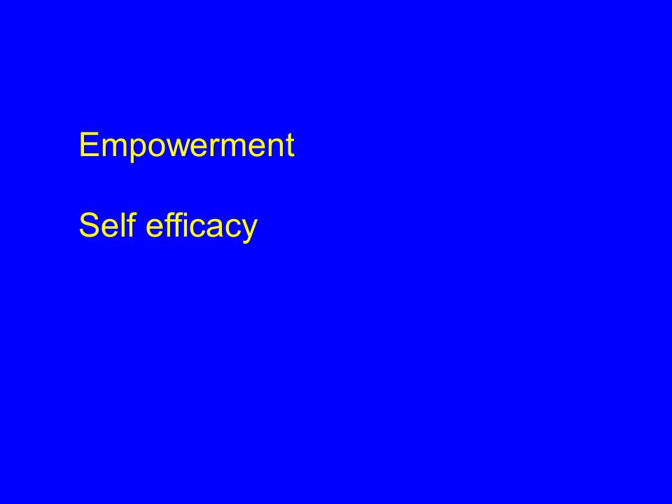 Empowerment Self efficacy 17