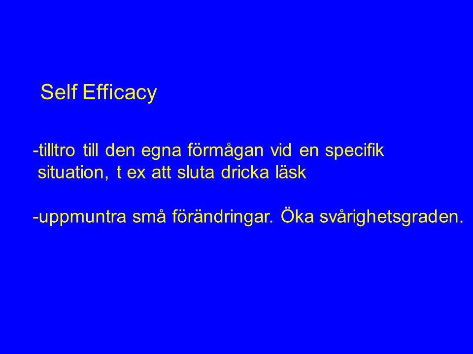 Self Efficacy -tilltro till den egna förmågan vid en specifik