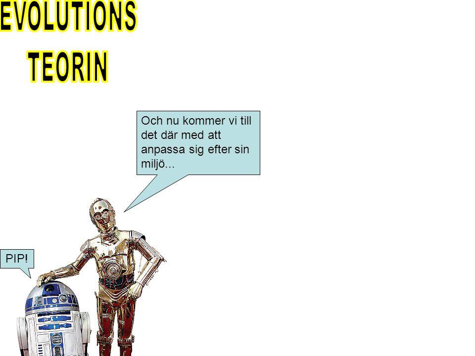 EVOLUTIONS TEORIN Och nu kommer vi till det där med att anpassa sig efter sin miljö... PIP!