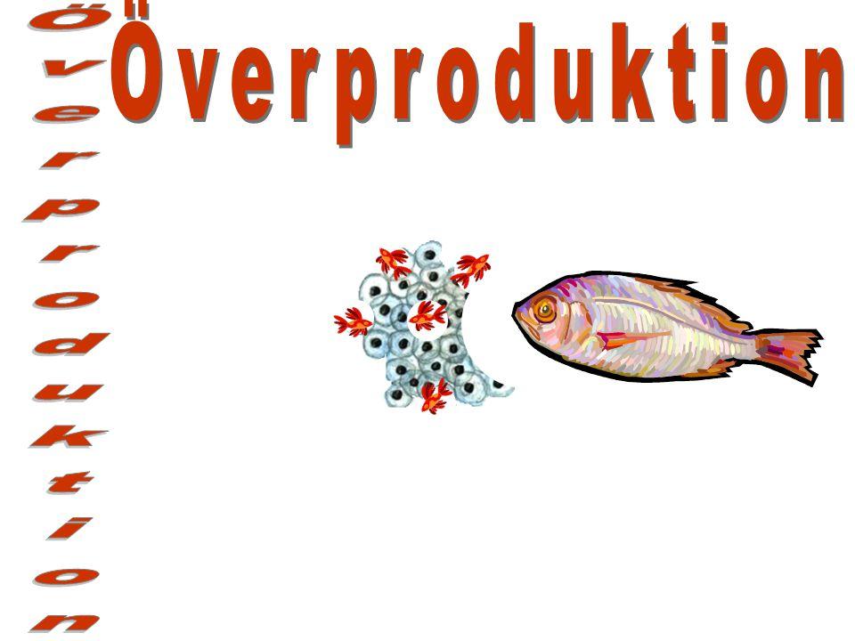 Överproduktion Överproduktion