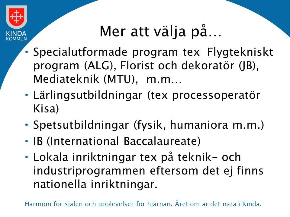 Mer att välja på… Specialutformade program tex Flygtekniskt program (ALG), Florist och dekoratör (JB), Mediateknik (MTU), m.m…