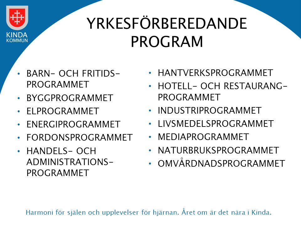 YRKESFÖRBEREDANDE PROGRAM