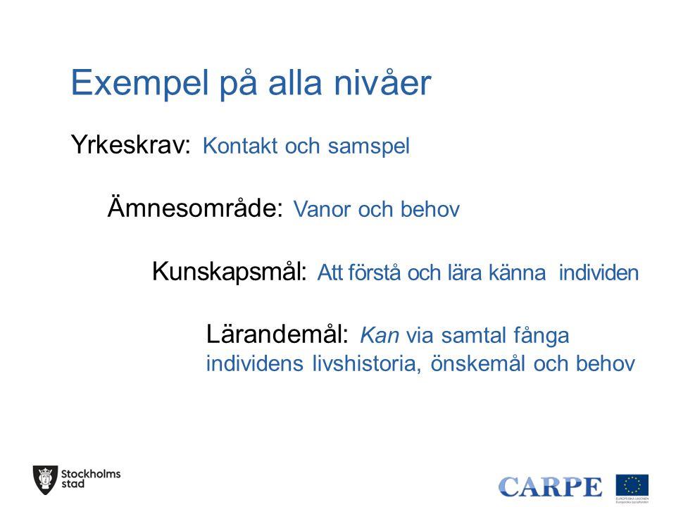 Exempel på alla nivåer Yrkeskrav: Kontakt och samspel