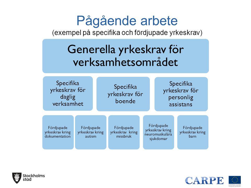 Pågående arbete (exempel på specifika och fördjupade yrkeskrav)
