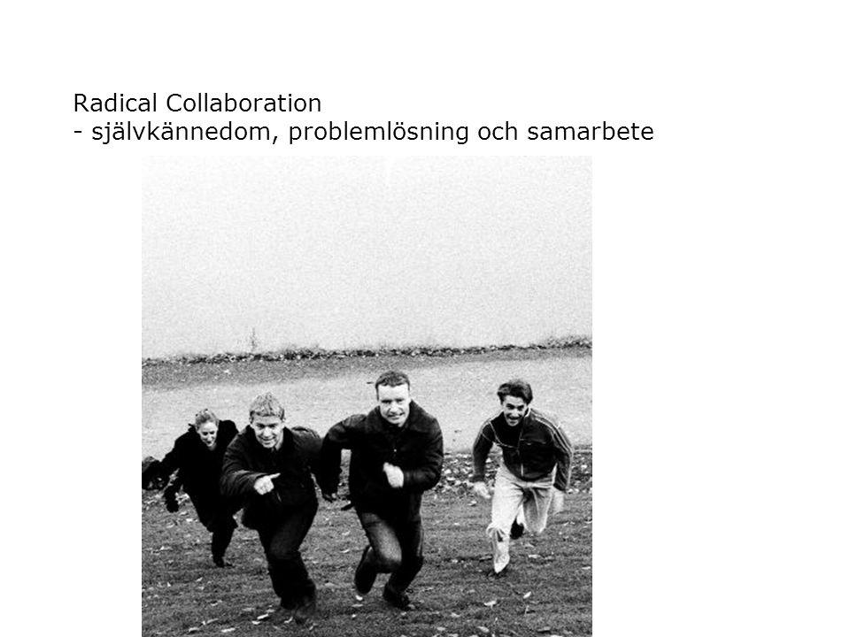 Radical Collaboration - självkännedom, problemlösning och samarbete