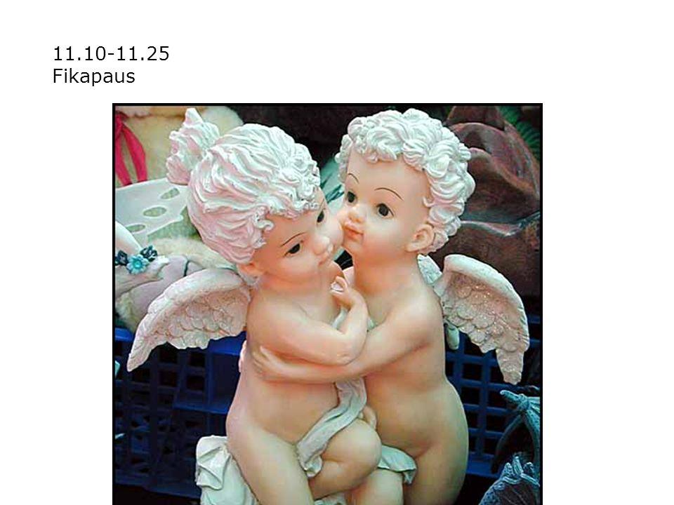 11.10-11.25 Fikapaus