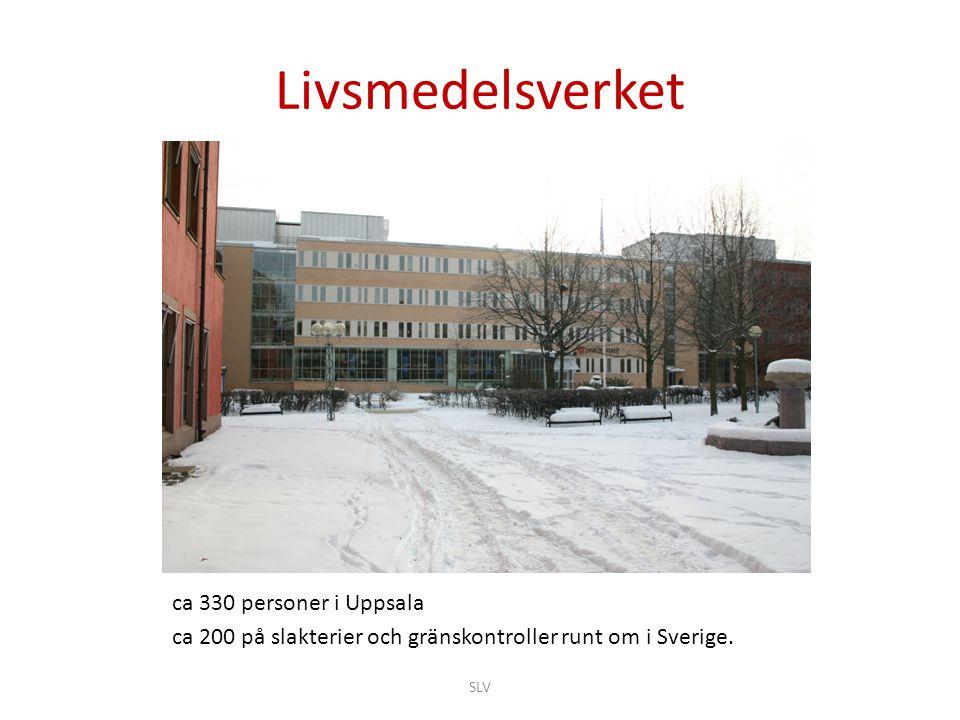 Livsmedelsverket ca 330 personer i Uppsala
