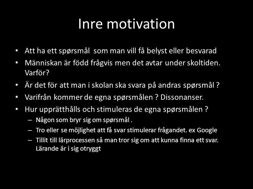 Inre motivation Att ha ett spørsmål som man vill få belyst eller besvarad. Människan är född frågvis men det avtar under skoltiden. Varför