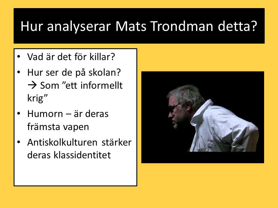 Hur analyserar Mats Trondman detta