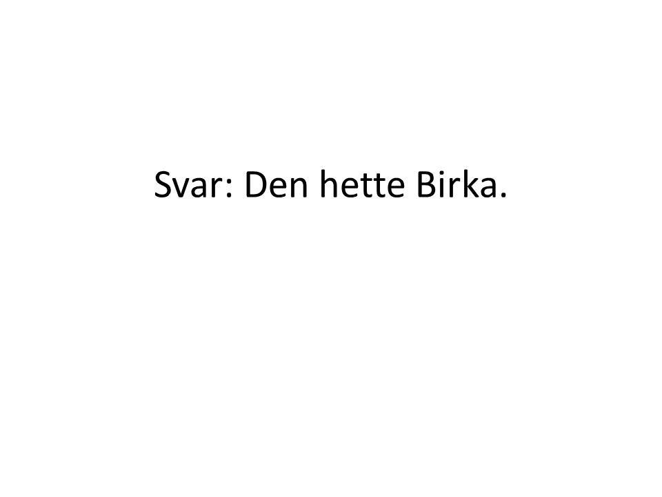 Svar: Den hette Birka.