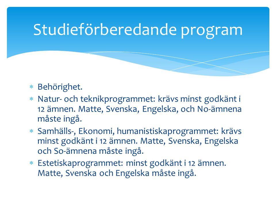 Studieförberedande program