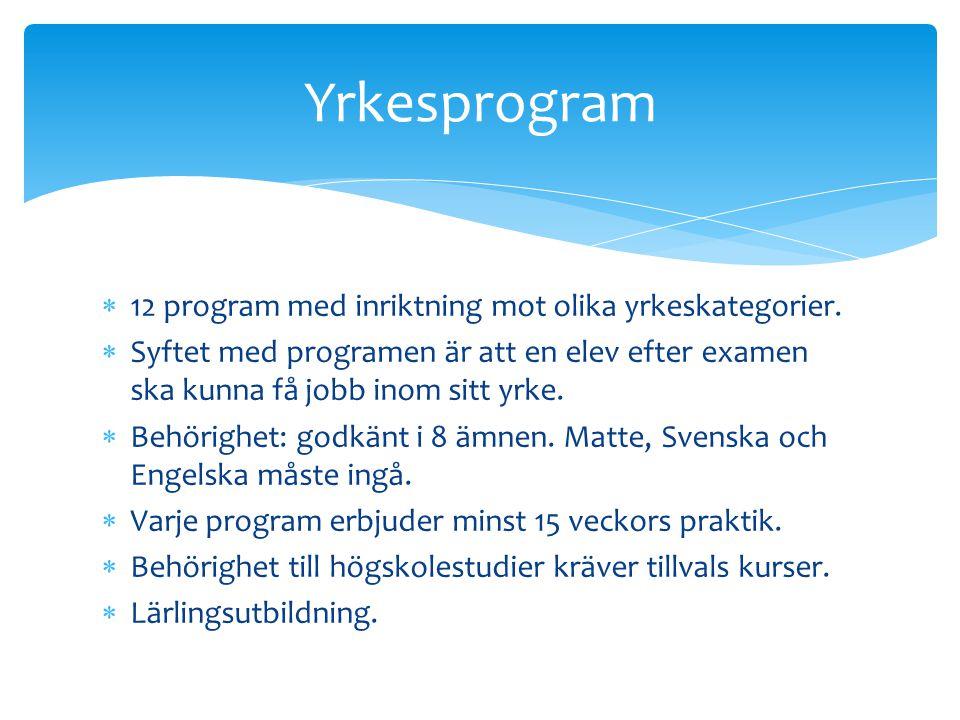 Yrkesprogram 12 program med inriktning mot olika yrkeskategorier.