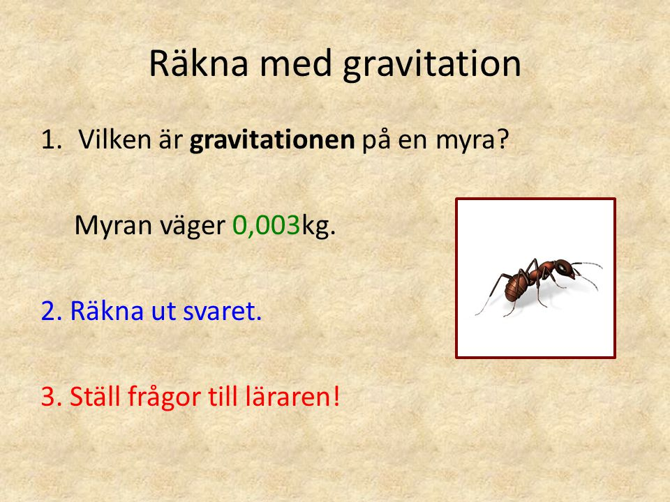 Räkna med gravitation Vilken är gravitationen på en myra