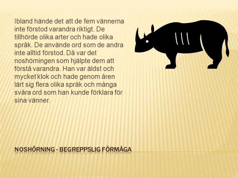 Noshörning - Begreppslig förmåga