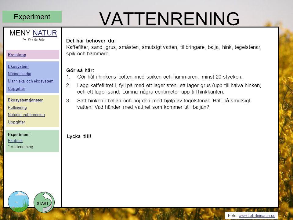 Vattenrening Experiment MENY NATUR Det här behöver du: