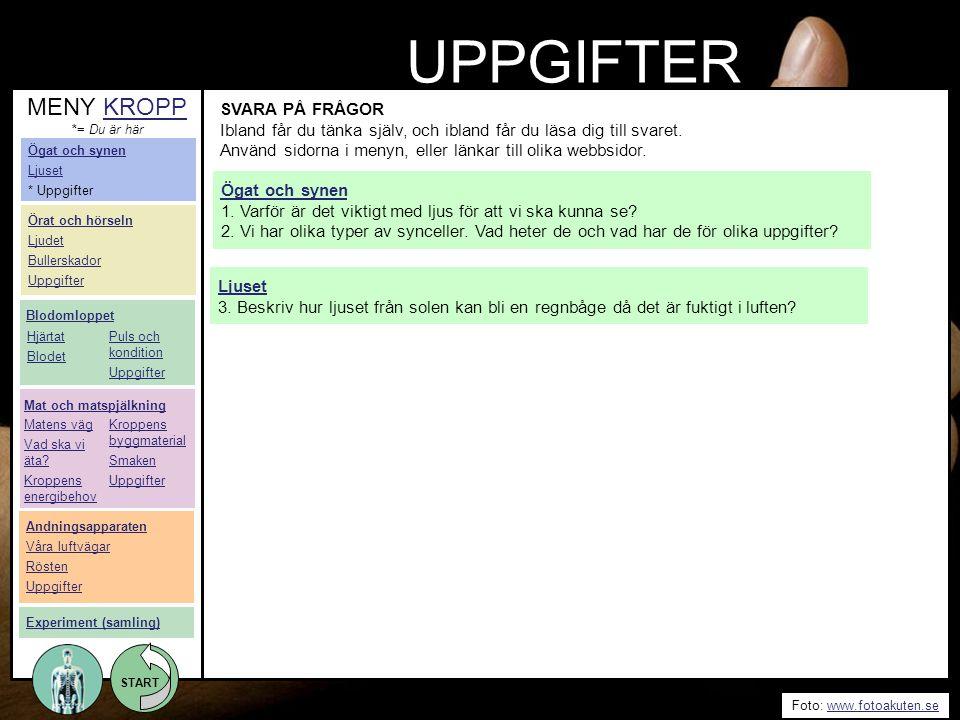 UPPGIFTER MENY KROPP SVARA PÅ FRÅGOR