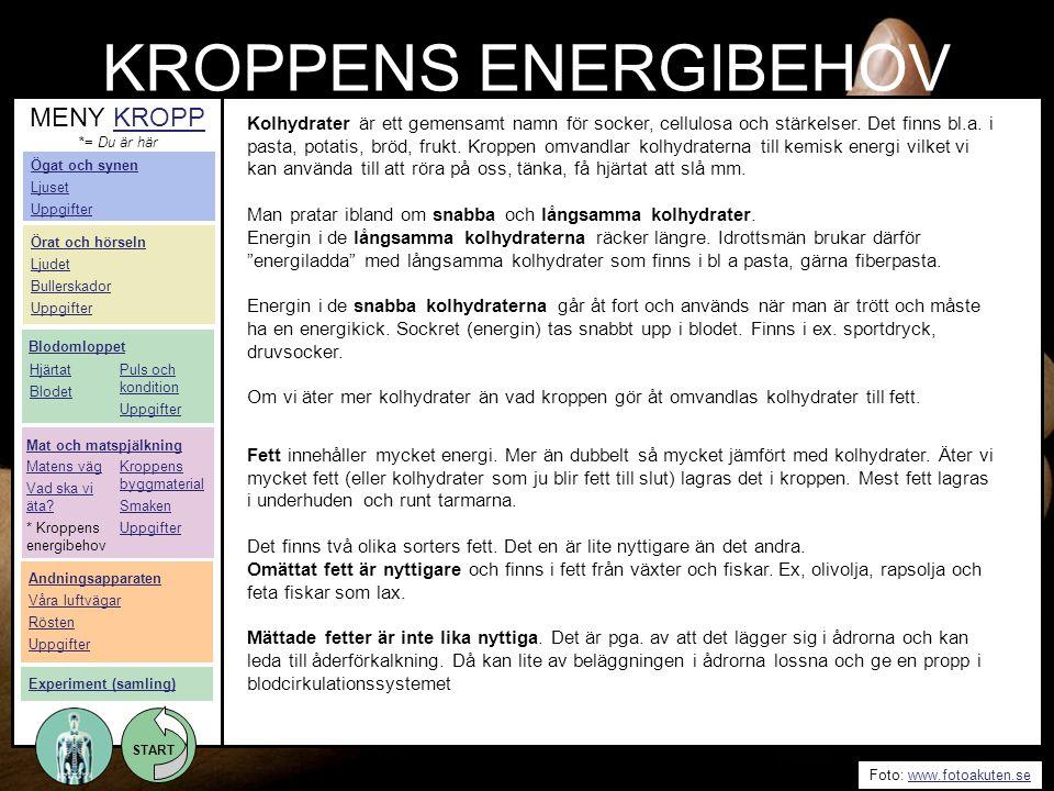 KROPPENS ENERGIBEHOV MENY KROPP