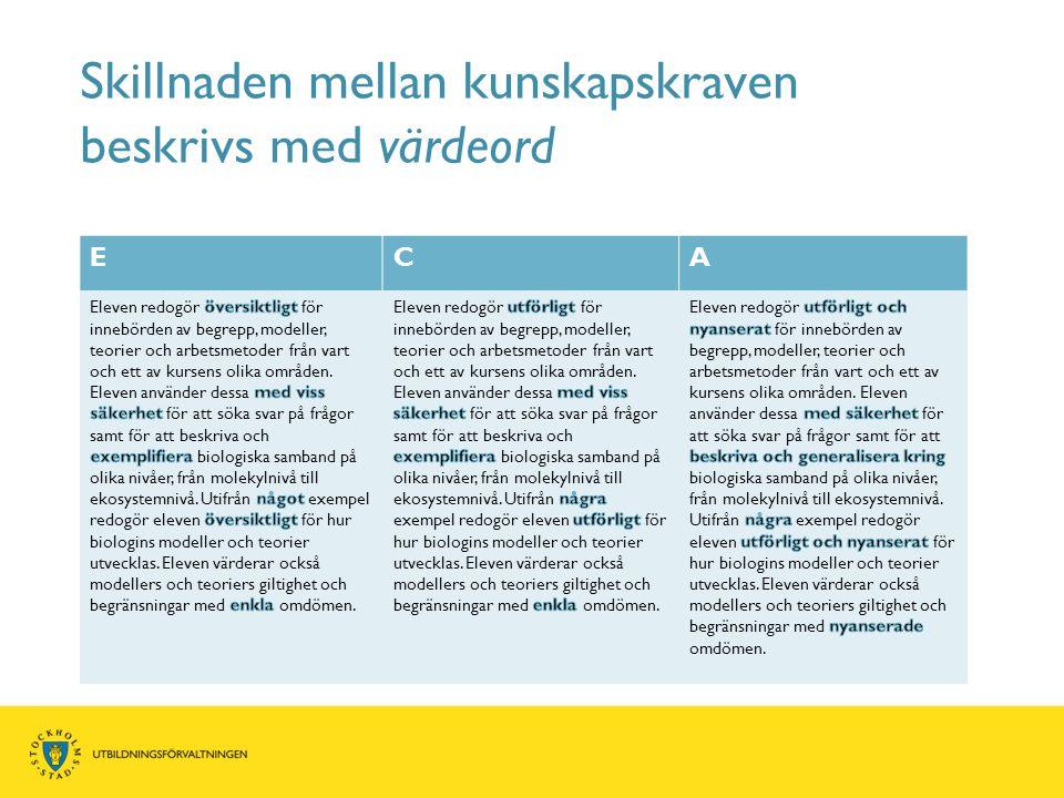 Skillnaden mellan kunskapskraven beskrivs med värdeord