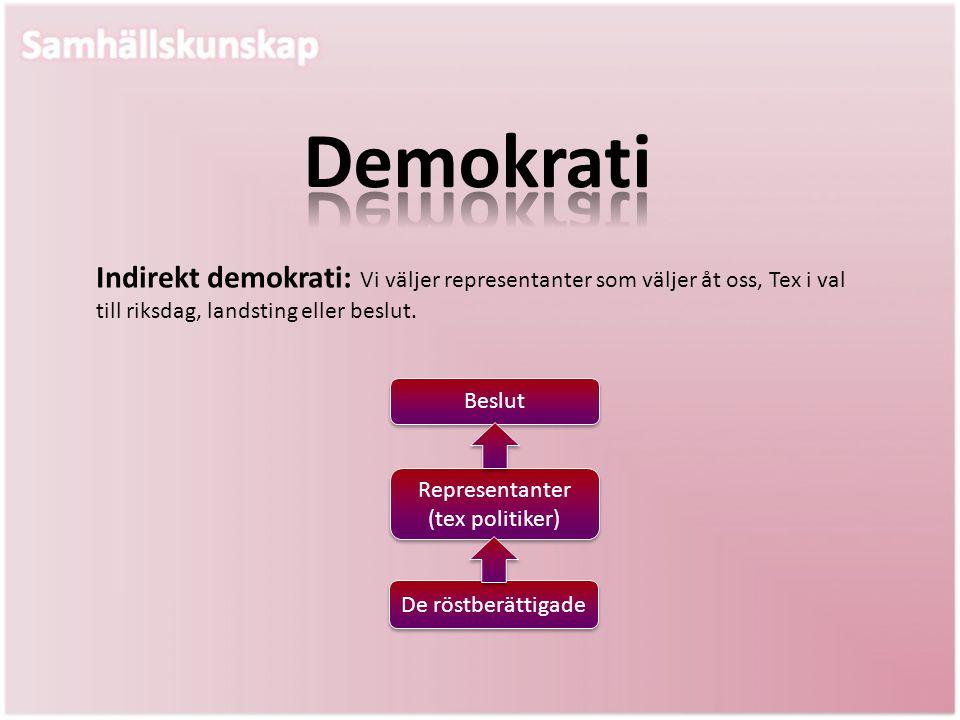 Representanter (tex politiker)