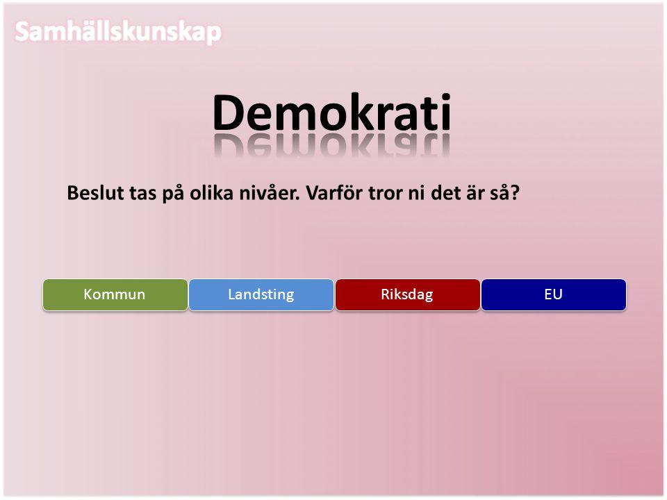 Demokrati Beslut tas på olika nivåer. Varför tror ni det är så Kommun