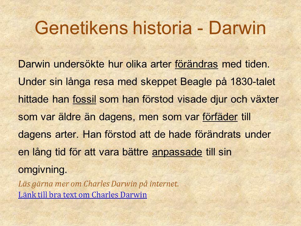 Genetikens historia - Darwin