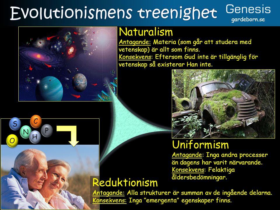 Evolutionismens treenighet