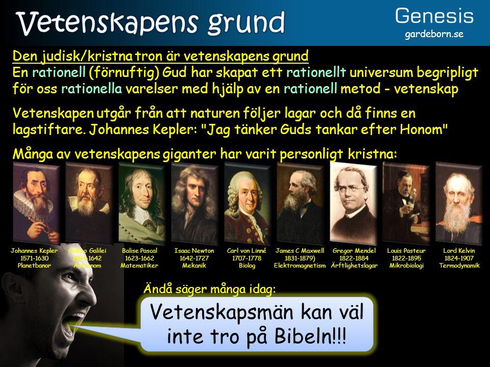 Vetenskapsmän kan väl inte tro på Bibeln!!!