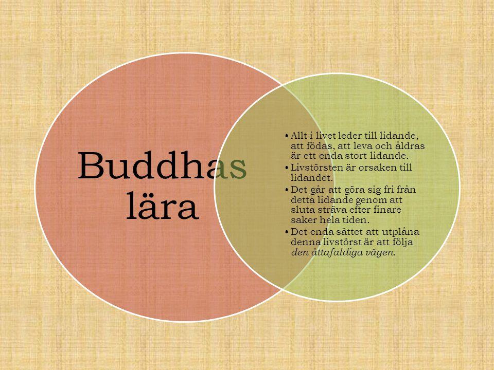 Buddhas lära Allt i livet leder till lidande, att födas, att leva och åldras är ett enda stort lidande.