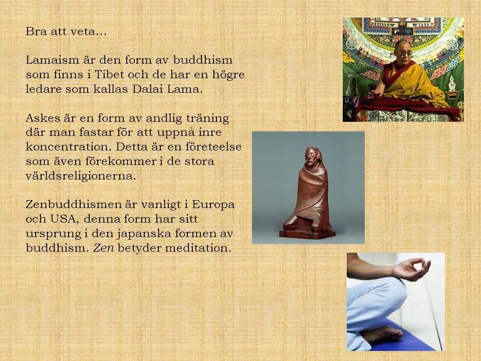 Bra att veta… Lamaism är den form av buddhism som finns i Tibet och de har en högre ledare som kallas Dalai Lama.