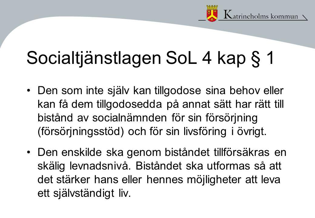 Socialtjänstlagen SoL 4 kap § 1