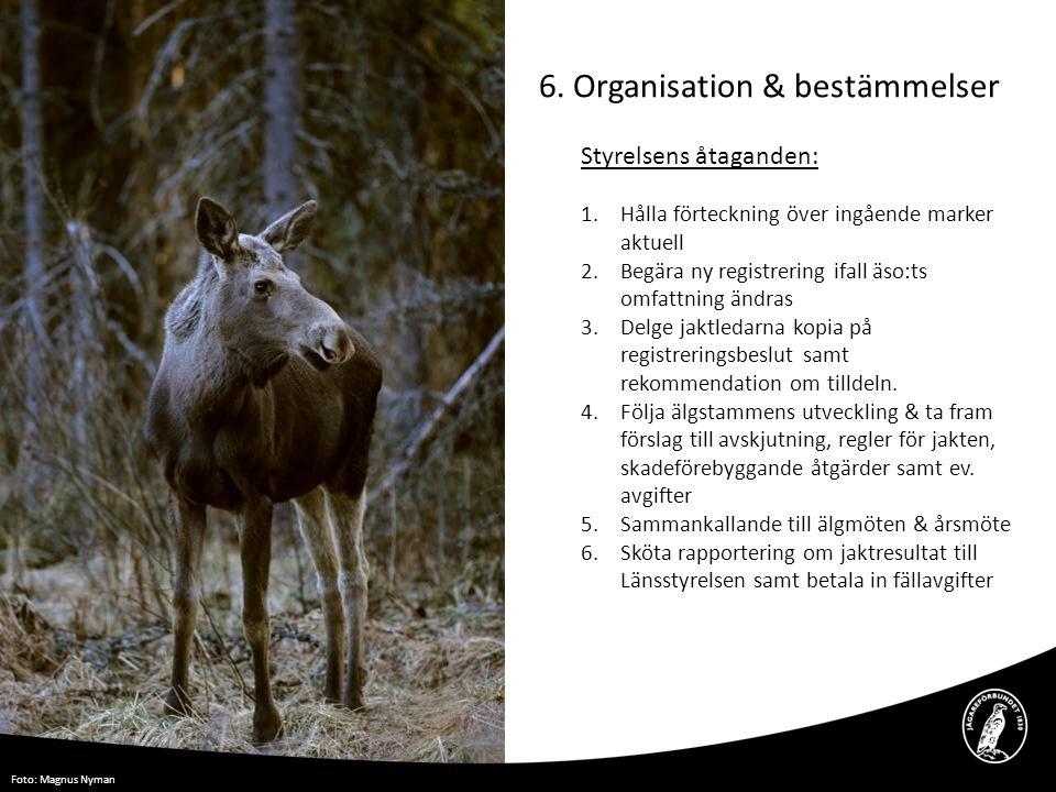 6. Organisation & bestämmelser