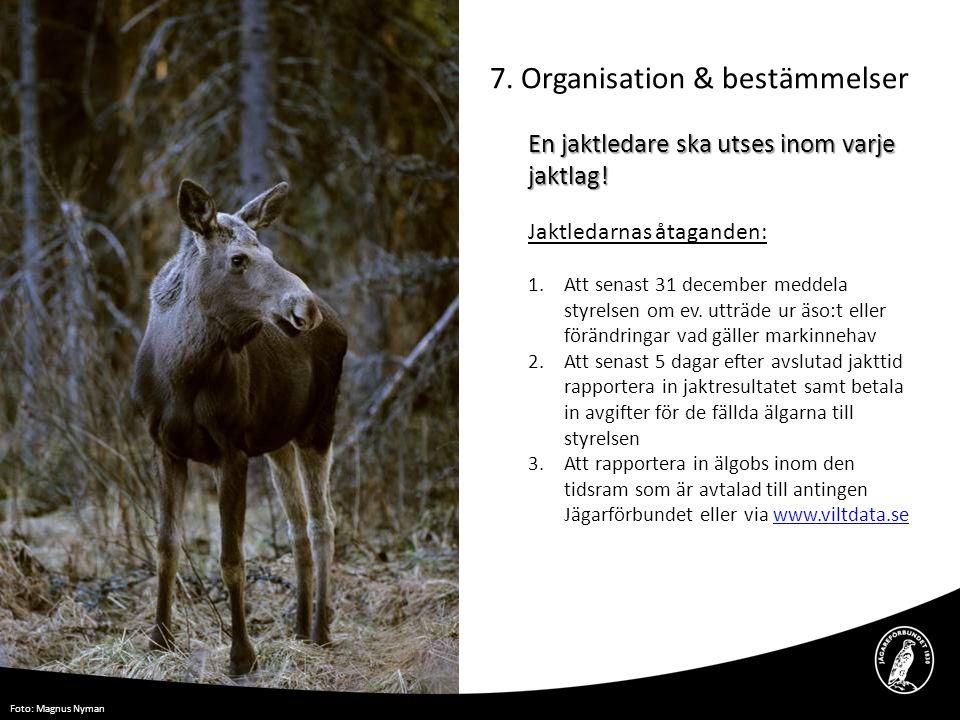 7. Organisation & bestämmelser