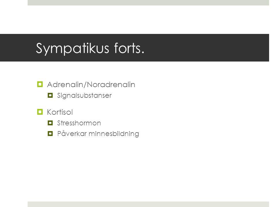 Sympatikus forts. Adrenalin/Noradrenalin Kortisol Signalsubstanser