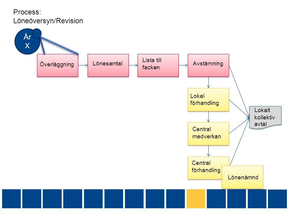 Process: Löneöversyn/Revision
