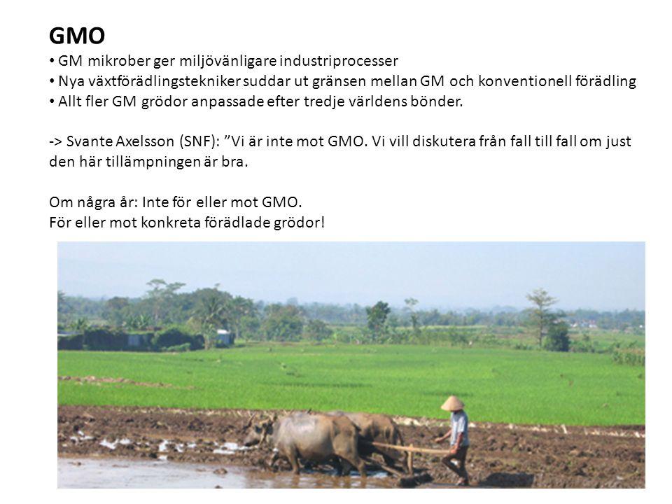 GMO GM mikrober ger miljövänligare industriprocesser