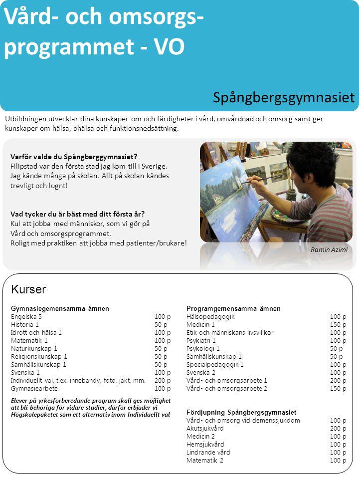 Vård- och omsorgs- programmet - VO
